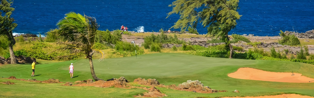 Luxury Golf Course Homes Kapalua