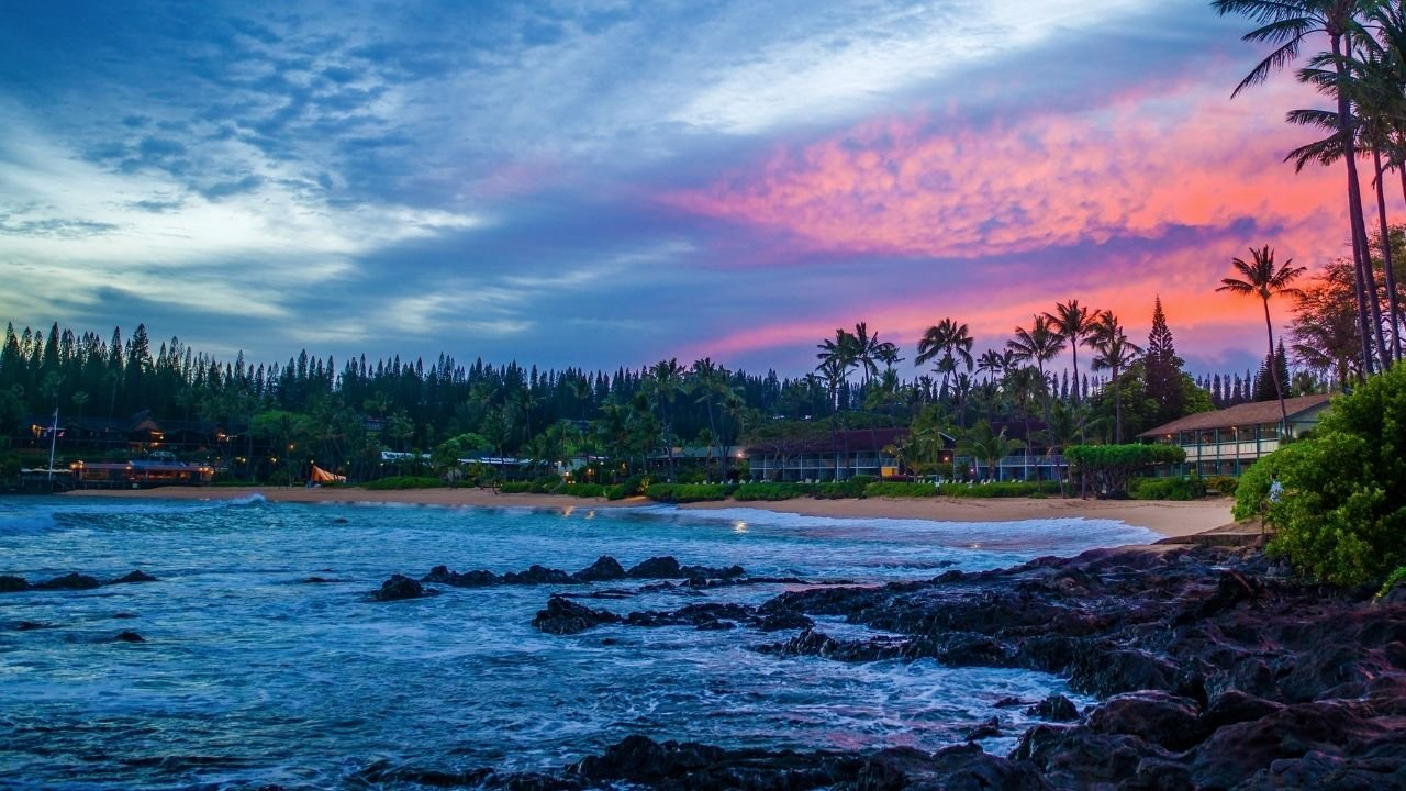 napili maui real estate